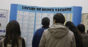 Peste 400 de locuri de muncă vacante