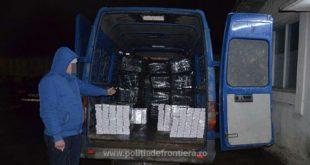 Aproximativ 30.000 de pachete cu țigări de contrabandă ascunse sub pomi fructiferi, descoperite de poliţiştii de frontieră