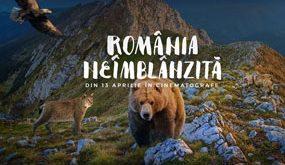 """Grupul de firme Safir susține proiectul de responsabilitate socială """"România Neîmblânzită"""""""