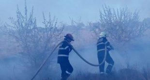 HUȘI/ Stână aflată în pericol, din cauza unui incendiu de vegetație!