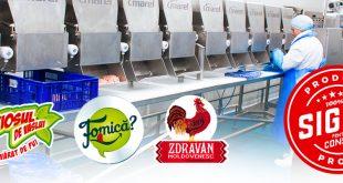 Grupul de firme Safir menține capacitatea de producție