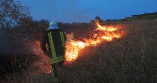Alte zece hectare de vegetație uscată, cuprinse de flăcări în județul Vaslui!