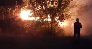 Incendiu de vegetație uscată în municipiul Vaslui