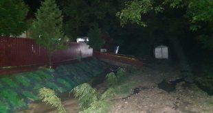 VIDEO/ Case şi curţi inundate în Rafaila şi Gârceni. Pompierii au intervenit pentru evacuarea apei!